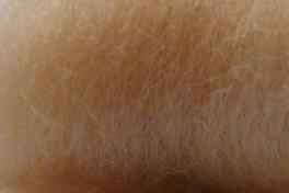 Australian Merino tops 20,5 µm, skin color, code AMS125, 100 g