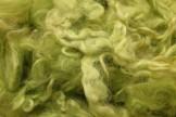 Wensleydale garbanėlės, žalios, kodas DWG101, 20 g